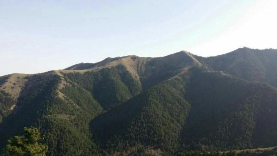 羅山自然保護區