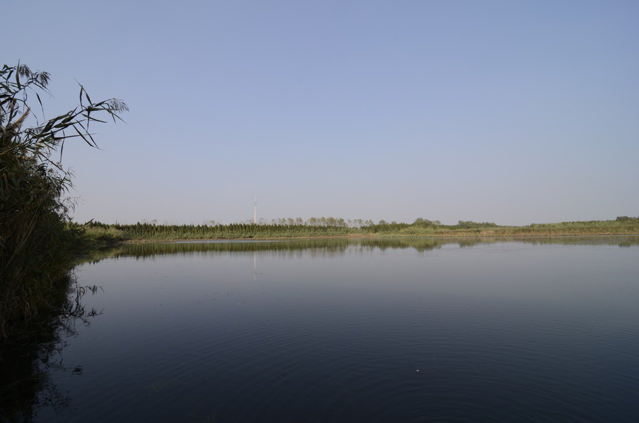 Qinhu National Wetland Park Admission Ticket