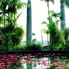 Nanni Hot Spring User Photo