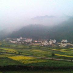 龍尾村用戶圖片