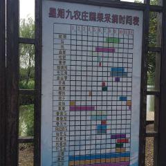 Kunshan Xingqi Jiu Leisure Ecology Farm User Photo