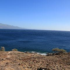 Papawai Scenic Lookout User Photo