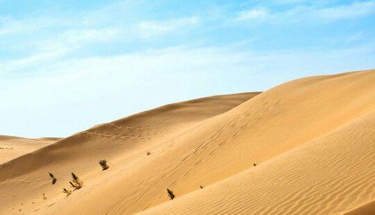 毛烏素沙漠