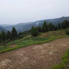 Changchizhen User Photo