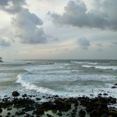 淺海灣用戶圖片