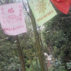 萬壽山景區用戶圖片