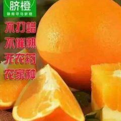 Qingshansi User Photo