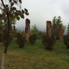규화목왕국 여행 사진
