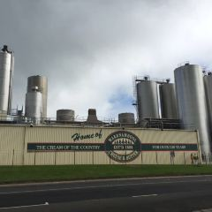 Allansford Cheese World User Photo