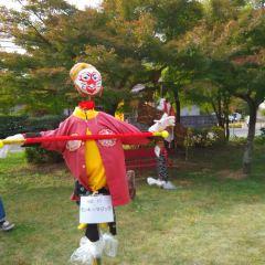 Momotaro Park User Photo