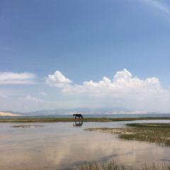 沙島湖濱遊樂區用戶圖片