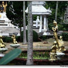 九世皇廟張用戶圖片