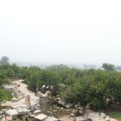 Wan Fu Yuan User Photo