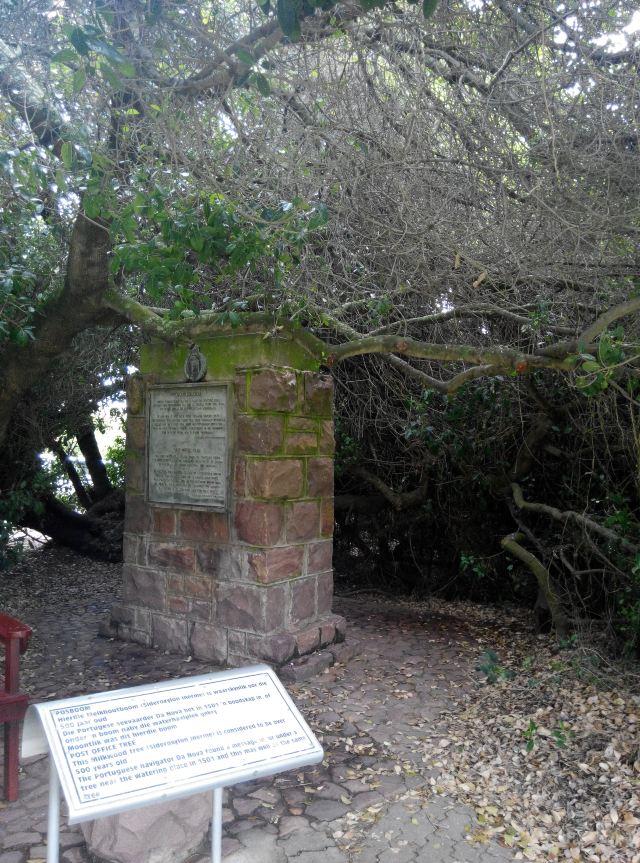 莫塞爾港郵政樹