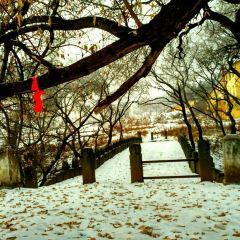 닝안 대석교 여행 사진