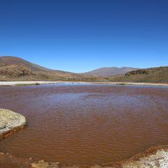 Laguna Roja User Photo