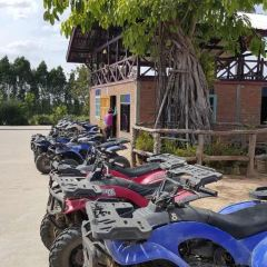 Pattaya Elephant Village User Photo