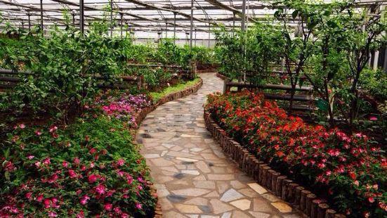 農墾香坊農場旅遊區