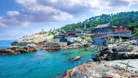 Nature in Busan