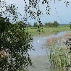 安邦河國家濕地公園用戶圖片