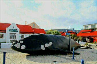 The Whale House Museum