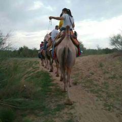Wuwei Desert Park User Photo