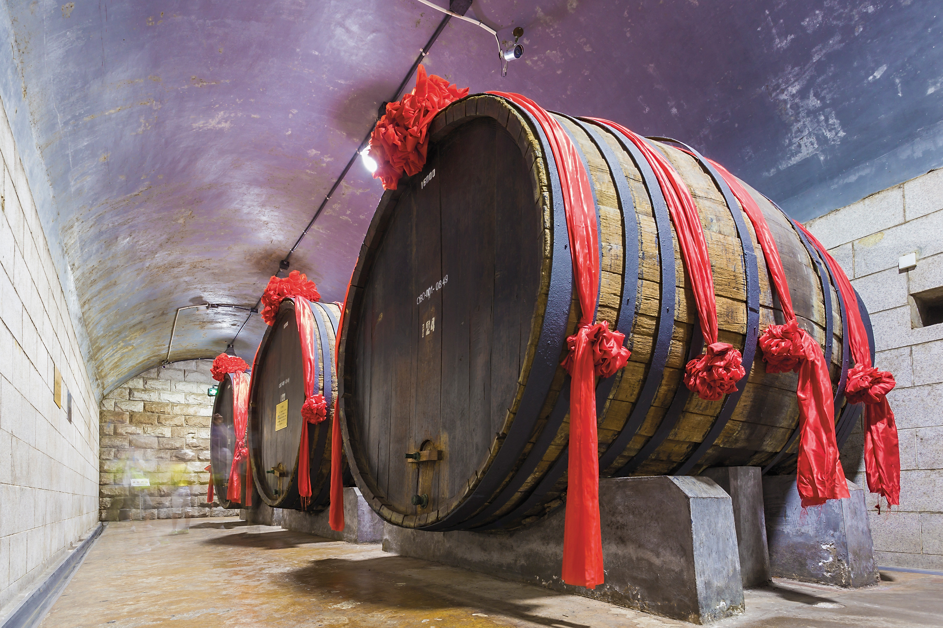 Changyu Wine Culture Museum