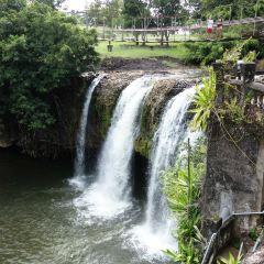 帕羅尼拉公園用戶圖片