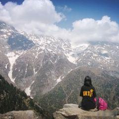 Magic View雪山峽谷觀景台用戶圖片
