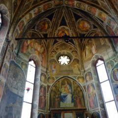 Duomo di Padova User Photo