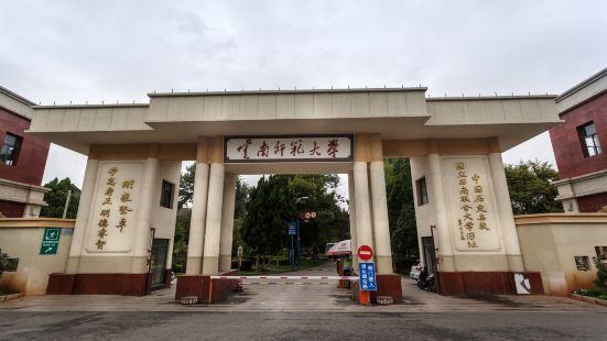 雲南師範大學