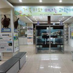 생명과학체험박물관 여행 사진