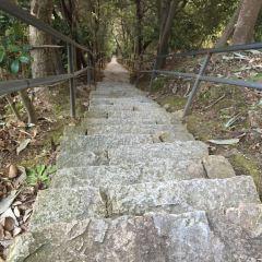 三疊井森林公園用戶圖片