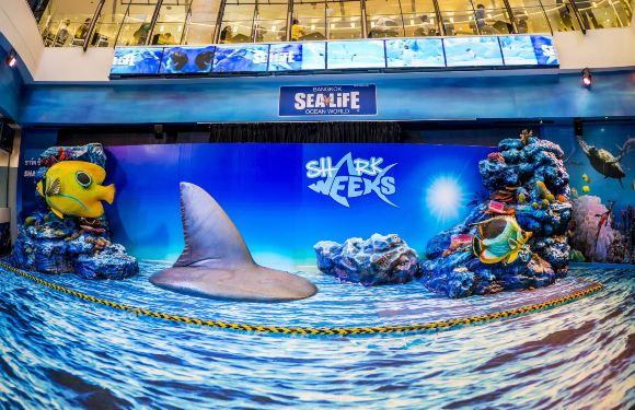 曼谷暹羅海洋世界門票