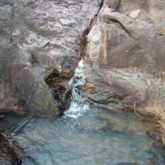 齊廬山風景區用戶圖片