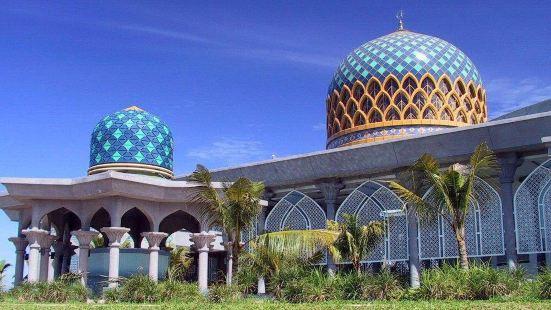 馬來西亞大學植物園