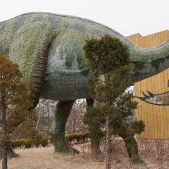 고성 공룡박물관 여행 사진