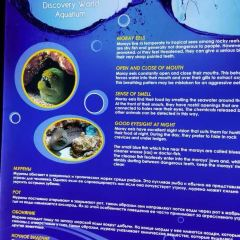 索契海洋探索世界水族館用戶圖片