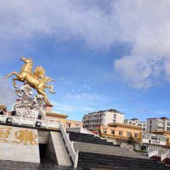 Nima Temple User Photo