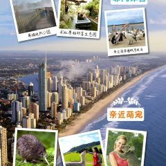 澳新軍團海灣用戶圖片