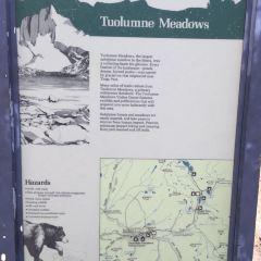 Tuolumne Meadows User Photo