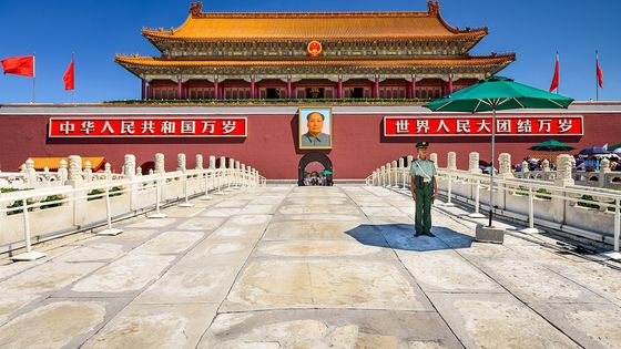 Forbidden City and Temple of Heaven Private Tour