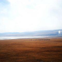 Quan Bay User Photo
