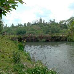 진장 바이루시 생태공원 여행 사진