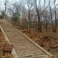 Huanghua Shenyuan User Photo