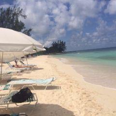 Lindquist Beach用戶圖片