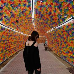 Aishanghuahai Theme Amusement Park (aishangzhuangyuan) User Photo