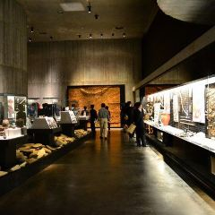 Hakodate Jomon Culture Center User Photo