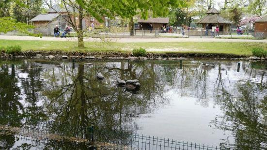 圖爾植物園