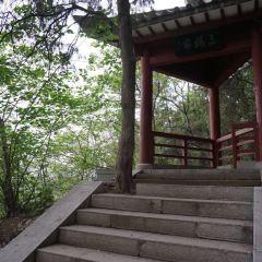 san rang ting User Photo